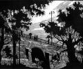 Klikushin G. Old Park, 1960, linocut